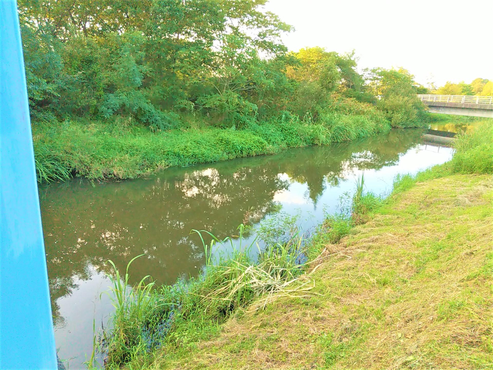 青森県三沢市ブラックバスが釣れる場所ランキングベスト5は?